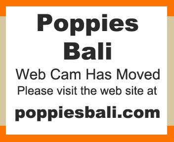 Dettagli webcam Bali